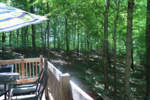 The-Lookout-Cataract-Lake-Cabin-Rental-Breathtaking-Deck-View-1-Cloverdale-Indiana